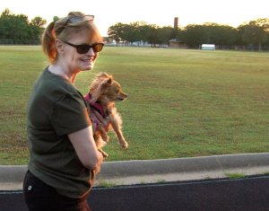 Abby carries Sierra the Chihuahua last night at the Byng High School track. Sierra has shorter legs than Max, so Abby sometimes picks her up on the curves and puts her down on the straight parts.