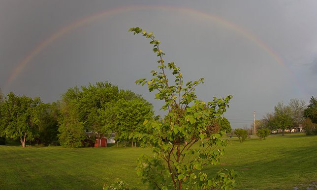 This rainbow appeared briefly after the passage of a thunderstorm this evening.
