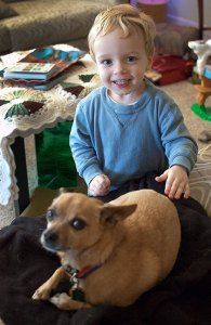 Our grandson Paul Thomas Reeves is no longer a baby, but a beautiful little boy. He is shown here at Thanksgiving, proudly petting Max the Chihuahua.