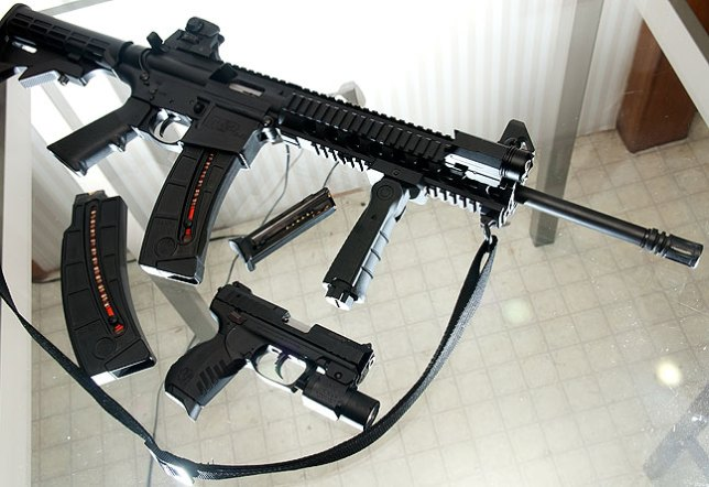 "The Smith and Wesson M&P 15/22 rifle is a .22lr caliber weapon in the popular AR-15 form factor. The public sometimes infers that ""AR"" in the name stands for Assault Rifle, but it actually came from the original manufacturer, and stands for Armalite Rifle. The pistol in this image is the Ruger SR22."