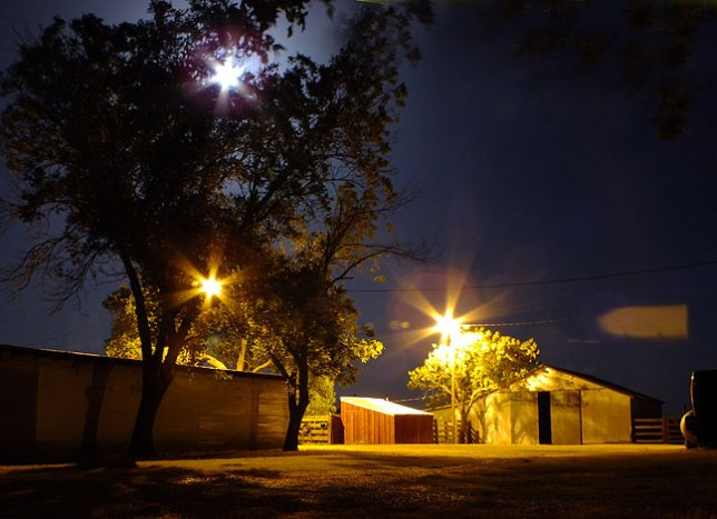 Streetlights and the moon fill Ethel's barn yard with an eery sense of season, in this case the still, silent warmth of a midsummer night.
