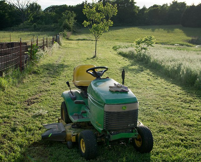 I stopped mowing for a few minutes this evening to make pictures.