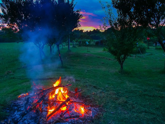 The fire goes to coals and the sky catches fire last night near the garden.