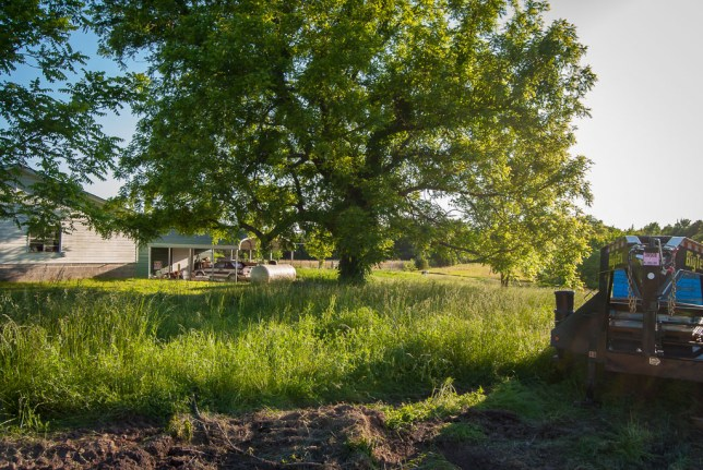 This is the view looking southwest toward our house from the site of a new cell tower in our next door neighbor's pasture,