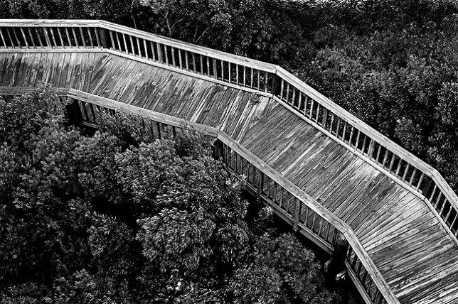 Walkway, Grand Isle State Park