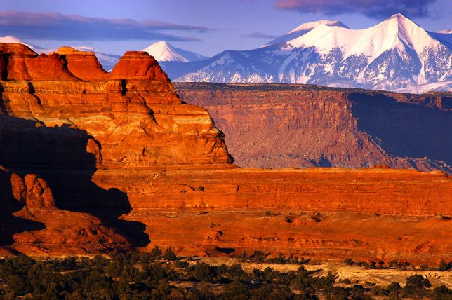 Formations in The Needles District of Canyonlands are set against a background of the La Sal Mountains.