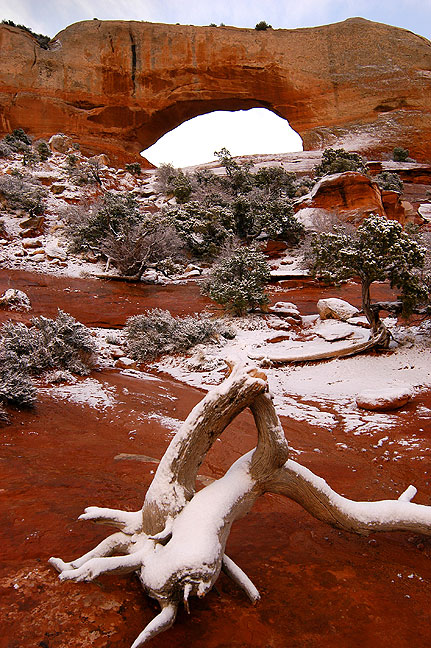 My first stop was Wilson Arch along U. S. 191 south of Moab, shown in early morning snow.