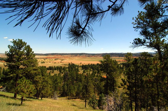 This is the view on the eastern end of the Red Beds trail at Devil's Tower.