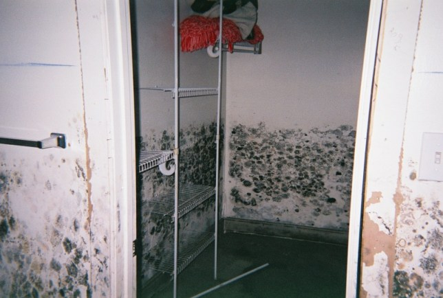 The towel rack and light switch in this image give an idea how high the water was in Nicole's house.