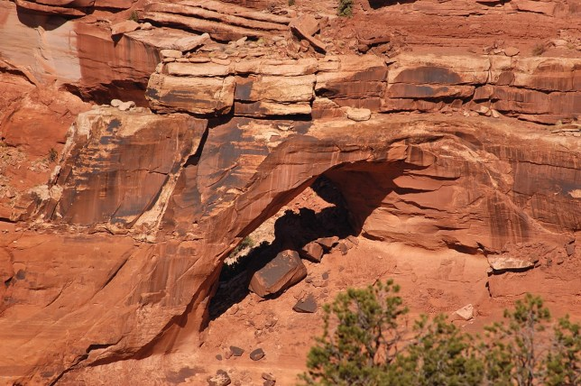 About halfway through my hike on the Neck Spring trail I saw this, which looked very much like a natural arch. I was later able to discover that the late arch hunter Bob Fagley identified it on his site as Broken Bell Arch.