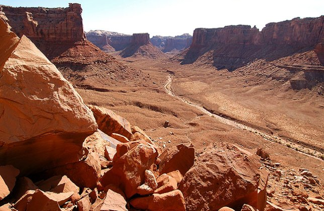 The view up Taylor Canyon, Canyonlands.
