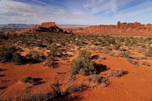 This overview looks west from near the Klondike Bluffs trail head at Arches.