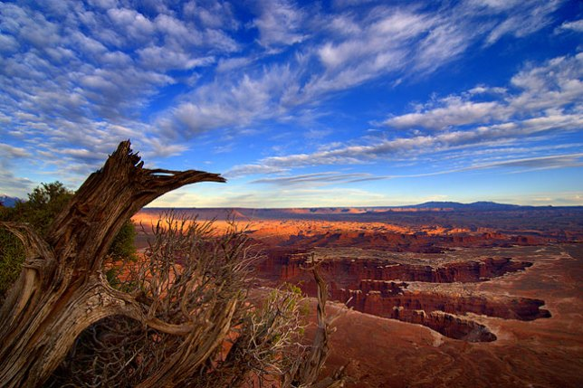 Sunset on Monument Basin viewed from Grand View Point, Island in the Sky District, Canyonlands National Park, Utah.