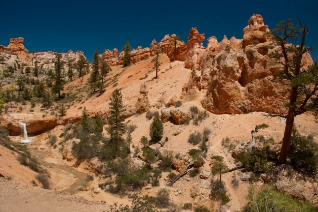 A broader overview of Bryce Canyon's Mosssy Cave area gives the impression of a nature park.