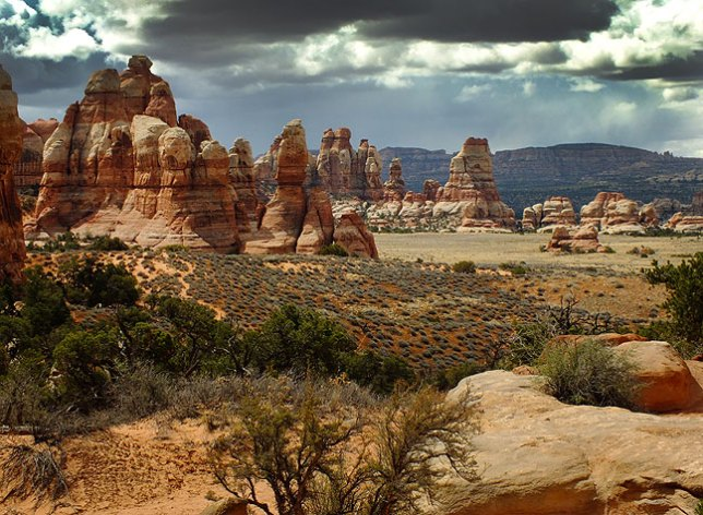The goal for our day hike: Chesler Park in the heart of the Needles District at Canyonlands.