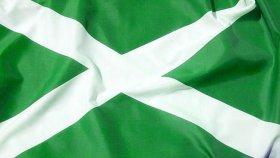 Northern Ireland flag?