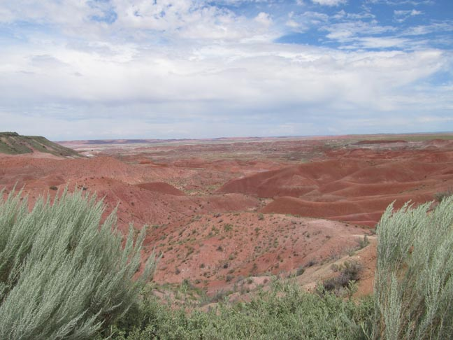 [Warm but not fuzzy: Arizona's painted desert, August 2013]