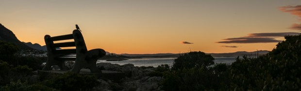 Capetown (185)