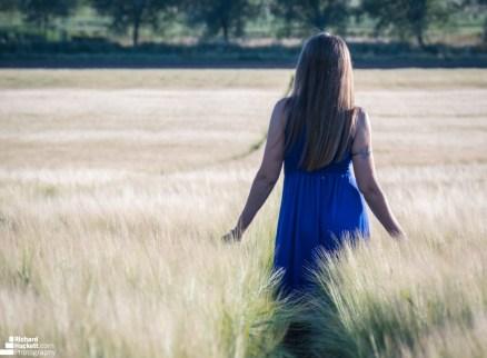 wheat-field_28275156347_o