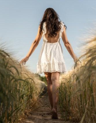 Barley Field (5)
