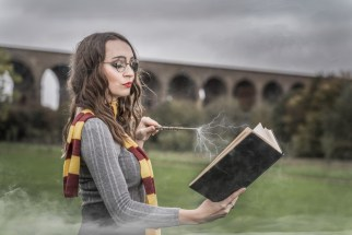 Harry Potter (32)
