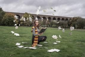 Harry Potter (40)