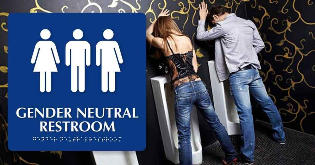 Gender-Neutral Toilets in Schools: Some Research and Conclusions | Richard  James Rogers