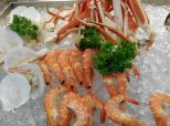 Cold Seafood Plate