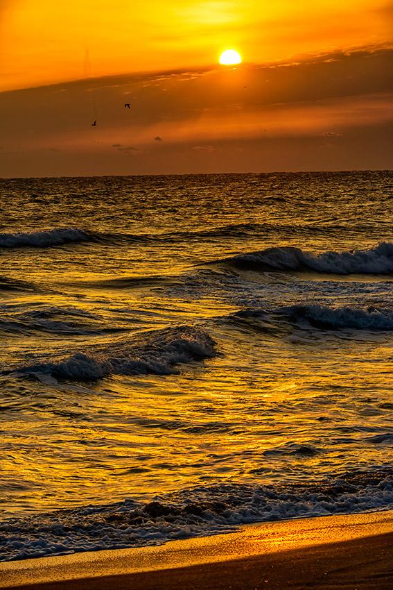 Merritt-Island-Beach-12Z1722.01