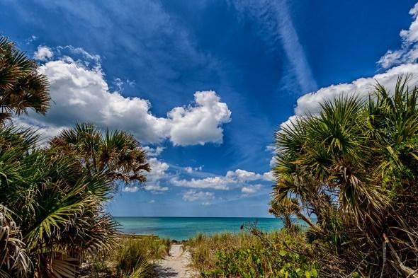 Caspersen-Beach-Venice-Florida-13-014103.vv