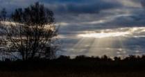 Rayons de soleil à Île Saint-Bernard