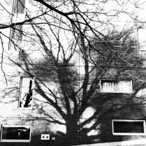 15112014-IMG_1978