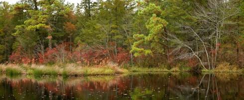 Chatsworth Lake New Jersey