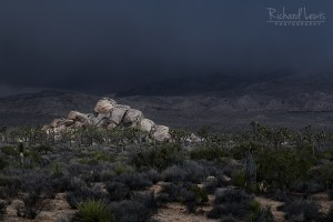 Approaching Storm in Joshua Tree National Park