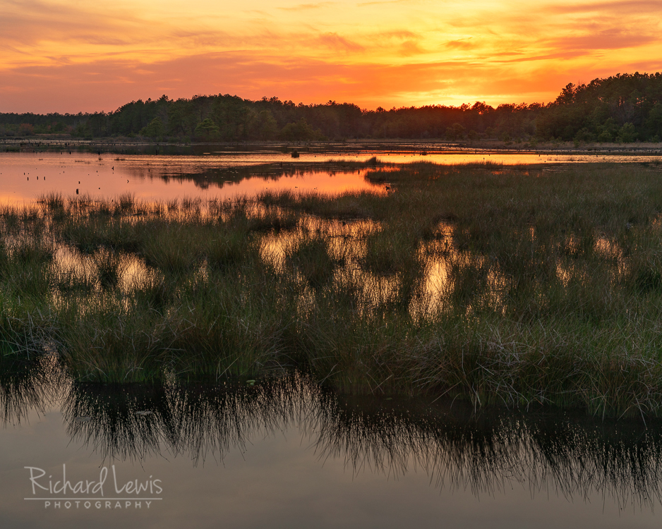 Fiery Sunset Franklin Parker Preserve Pinelands