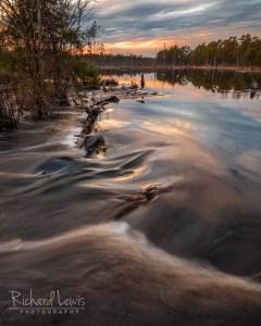 Pinelands Beaver Dam