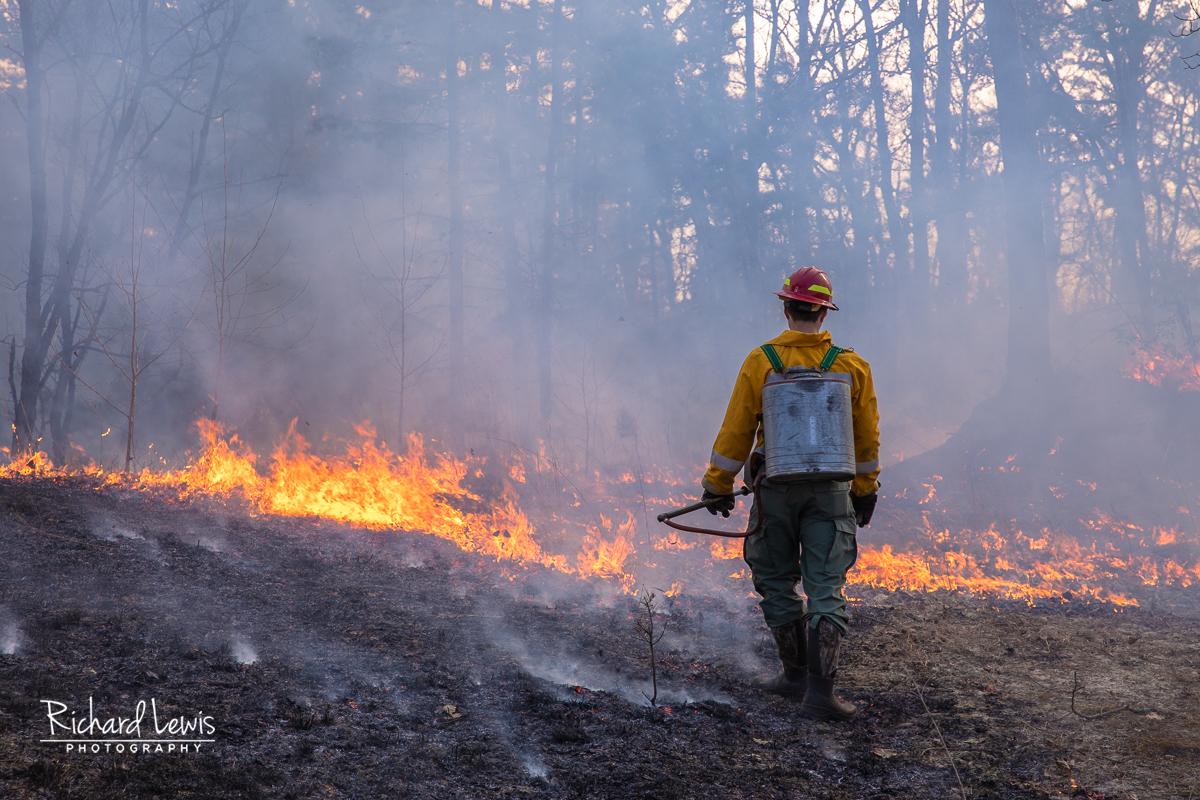 Pine Barrens Fire