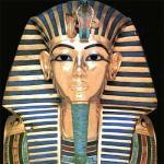 barba egipcia