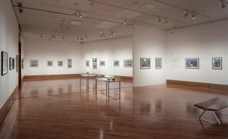 Creole World; Frost Art Museum Installation