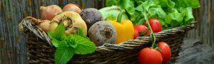 cropped-vegetables-vegetable-basket-harvest-garden