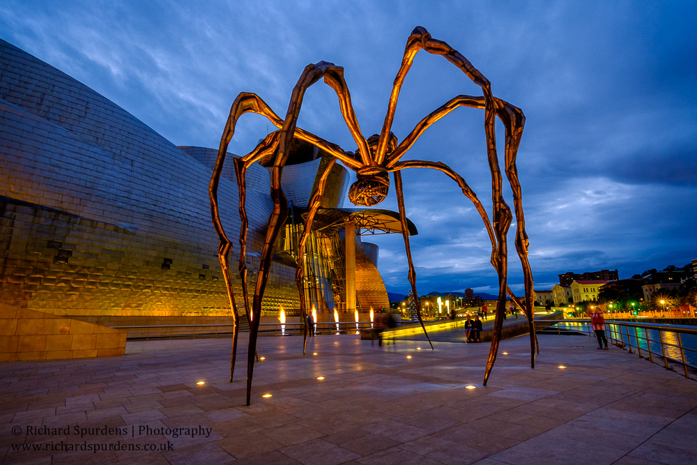manam spider at night