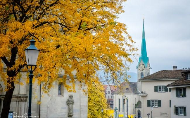 Zurich Autumn colours I