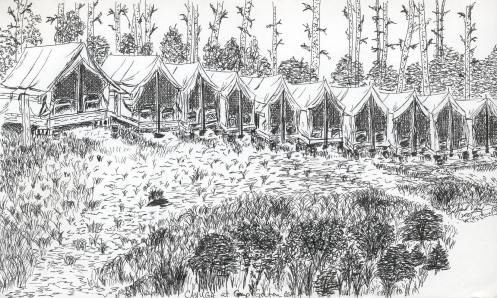 Cayuga At Camp Gorton