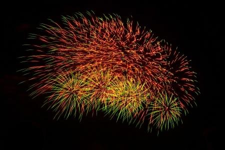 Marigold firework burst