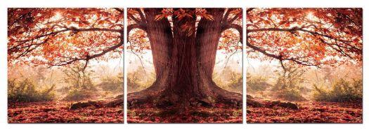 Triptych Photo