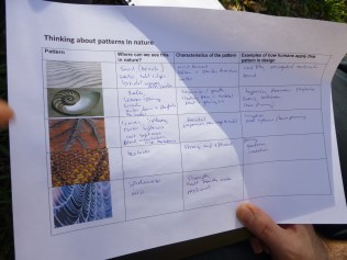 Working with patterns in nature - our groups starts to think our way around the shapes and uses...