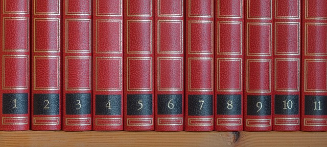 Biblioteca-585002_640