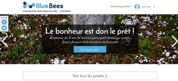 blue bees 01