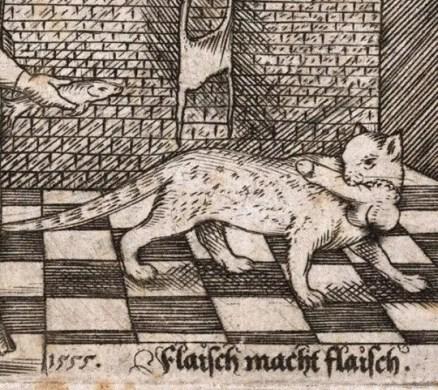 medieval cat joke.jpg