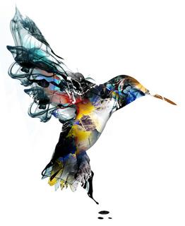 bird00